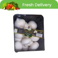 Agrico Qatar Mushroom