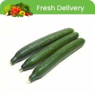Cucumber-Qatar