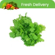 Supperkart Qatar online grocery store Coriander leaves