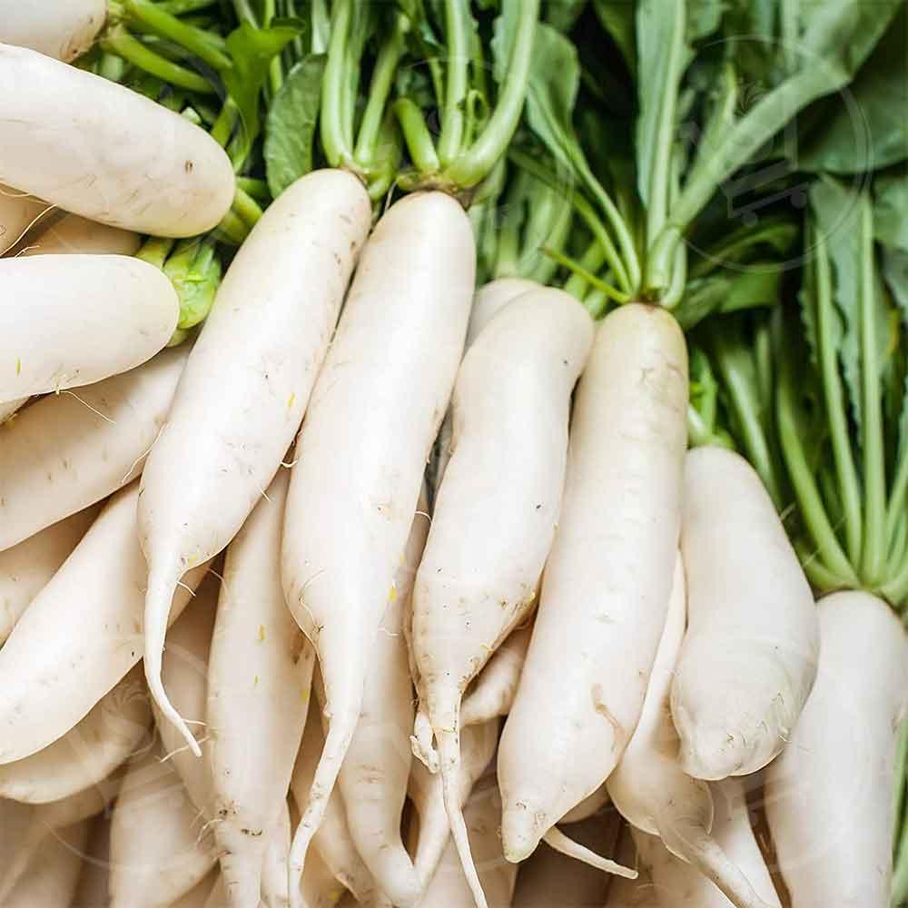Supperkart Qatar online grocery store Daikon radish 1